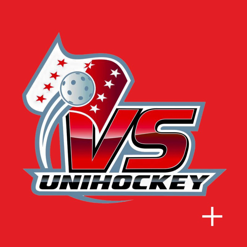 Association Valaisanne de Unihockey